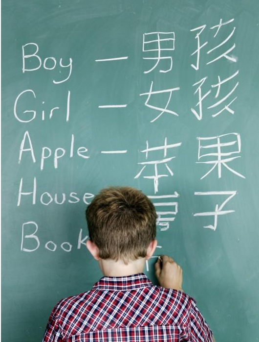 imeeshu.com — Chinese + Spanish charter school. are we nuts to ...