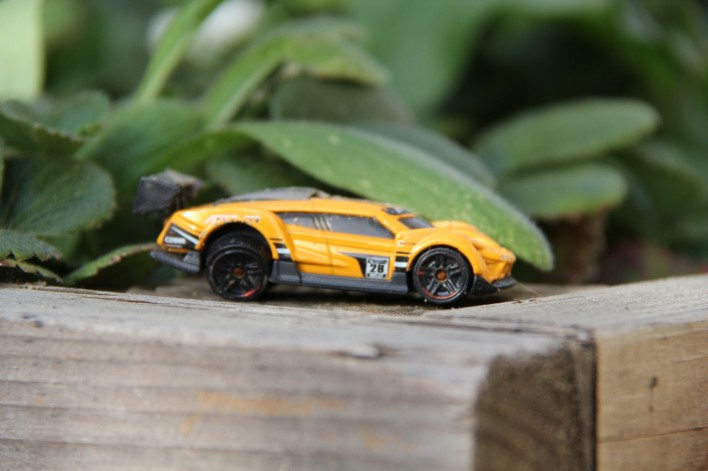 hot wheel in the garden bed