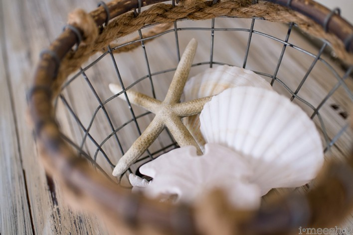 sea shells in wire basket beach nautical decor