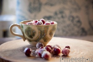 first frost cranberries – crunchy, tart, sweet, yumminess
