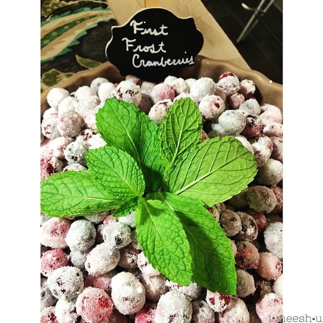 first-frost-cranberries-instagram